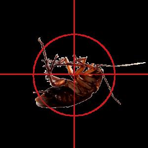 BugCrosshairs1